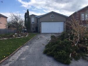 Alcona! Fully Renovated 4 bedroom Bungalow! Large Fenced Yard!