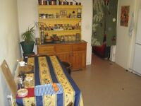 **A double room in garden flat with patio just off Brick Lane available from the 4th February!! ***