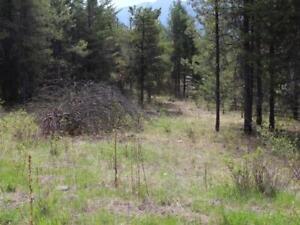Okanagan - Wentbridge acreage for sale