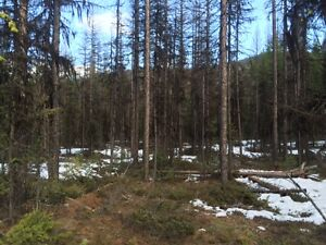 5 Acres only 20 minutes from Kimberley or Cranbrook