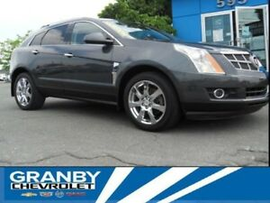 2010 Cadillac SRX 3,0 Performance