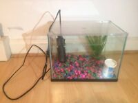Fish tank with filter, stones and decoration (used)