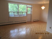 Spacious 3 Bedroom 1.5 Bath Apartment Close to Downtown