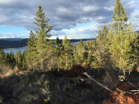 2.8 Acres Undeveloped Land Mountain and Lake View - Koocanusa MT