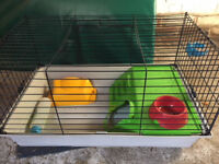 Guinea pig cage - with water bottle, food bowl and hay rack