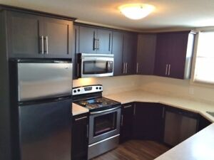 E. End Renovated Kitchen & Dishwasher, Insuite Laundry 125 Froom
