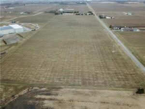 34 Acres Vineyard for sale in Niagara-on-the-Lake