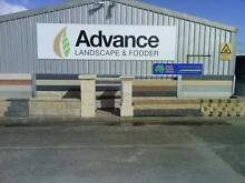 ADVANCE DOG 15KG Burton Salisbury Area Preview