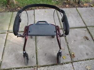 DOLOMITE WALKER $40.00 OBO London Ontario image 1