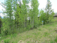 Blind Bay - Shuswap Lake Estates Lot
