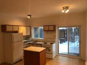 Spacious 4.5 renovated apartment in the heart of Plateau!!