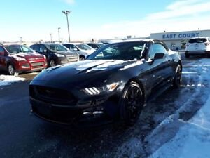 2017 Ford Mustang GT Premium, Heated/Cooled Leather Seats, Back