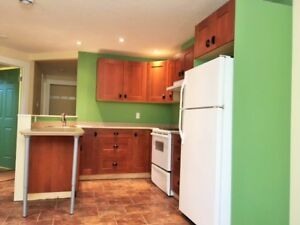 Strathcona/Mill Creek Great Basement Suite