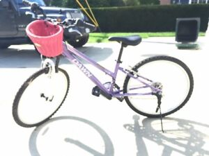 Beautiful Purple Girls Bike w/ Front Basket