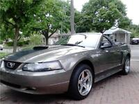 2002 Ford Mustang GT Show Condition Warranty 59k $12900 City of Toronto Toronto (GTA) Preview