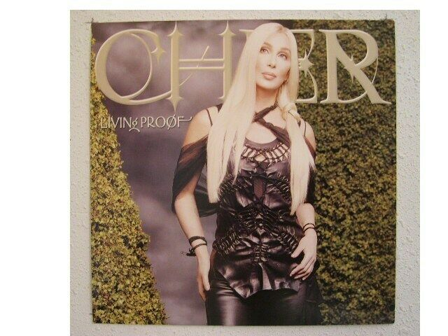 Cher Poster Flat Blonde Hair Living Proof