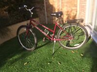 Clean & Stylish Classic Ladies' Bicycle (Lincoln Boulevard) - Burgundy Red, Extras - Richmond £75