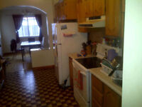 One room available in 5-bdr plateau apartment!