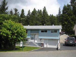 UPDATED AND MOVE IN READY LOGAN LAKE HOME FOR SALE