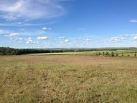 3.10 Acres Land for Sale - Only 10 minutes from Costco!