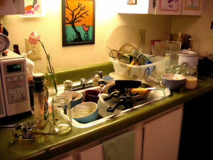 Messy House?? (No Problem) Consider it SOLVED, I'm Your Cleaner!