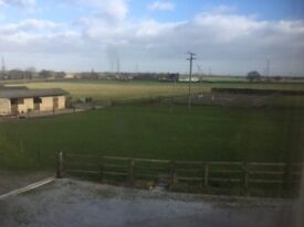 LIVERY AVAILABLE 1-5 STABLES, TURNOUT, LITE SCHOOL,GOOD HACKING, HAY AND TACK STORAGE
