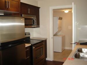 2 bedrooms and 2 baths apartment