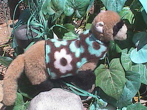 Ferret Harness Style Snuggie - Teal Flowers