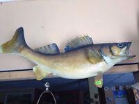 VINTAGE FISH MOUNTS-WALLEYE-PERCH-BASS-TROUT