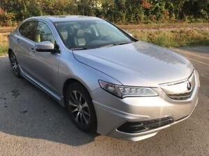 2015 Acura TLX Tech Sports Package Full Équipée