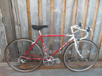 Miele Binova Vintage 12 Speed Bike