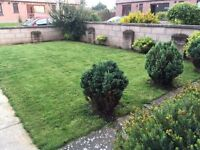 2 bedrooms, semi-detached house in Arbroath, gas heating