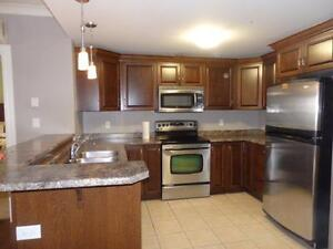 16-044 Lovely, furnished, SOUTH END condo, utilities included.