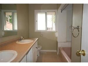 Turnkey - Licensed for 10 - Fully Rented - Close to Universities Kitchener / Waterloo Kitchener Area image 7