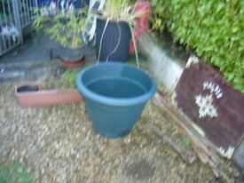 Large plastic plant pot