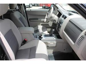 2008 Ford Escape *XLT* / V6 . 4WD . SUNROOF . POWER SEATS Kitchener / Waterloo Kitchener Area image 20