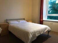 Rooms to rent in large HMO student property near Aberdeen University