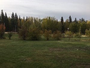 Onoway area 6 bedroom acreage home set up for horses