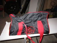 2 Gym or Travel Bag (one New)