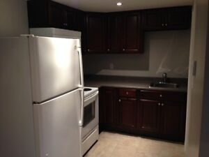 Newly renovated modern Bachelor available Sept. 1st 800/month