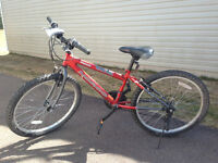 Norco Bicycle for sale12.5