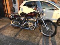 2004 Harley Davidson XL883 Custom Sportster