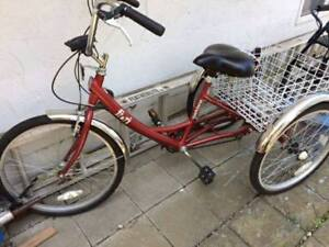 Adult Tricycle w/Basket