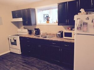 Newly Renovated 2 Bedroom Close to Dumont + Downtown