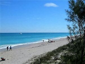 GORGEOUS LIGHT AND BREEZY FLORIDA CONDO FOR RENT - MUST SEE!