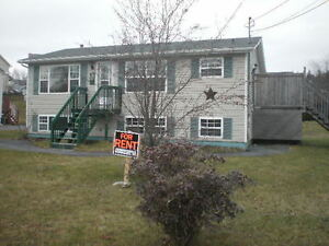 For rent 15 of Feb or 1 of March !