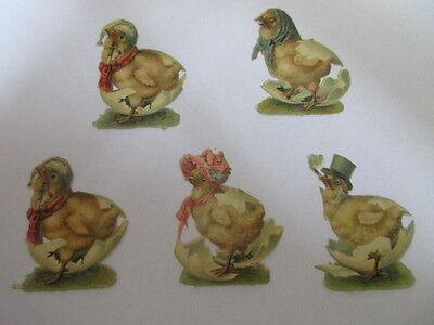 5 wunderschöne alte Präge Oblaten Glanzbild Kücken um 1910 ca. 4,5 cm