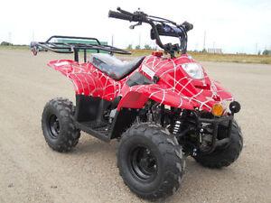 atv,quad,dune buggy, dirt bike, 300 cc 4x4 ,parts,