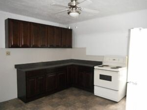 Beautiful and Spacious 3 BDRM Downtown on Charlotte! $1115
