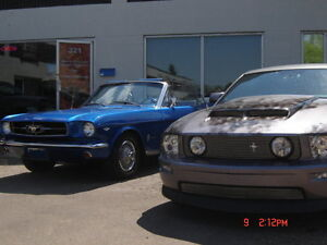Mustang Shop located in Sherwood Park Strathcona County Edmonton Area image 2